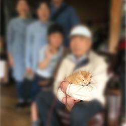 「祝☆エイズの猫に里親決定!」サムネイル1