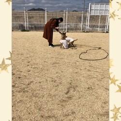 「Luluちゃん、色々練習中!」サムネイル3