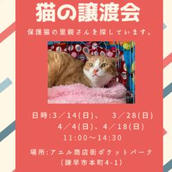 長崎県央犬と猫の会譲渡会