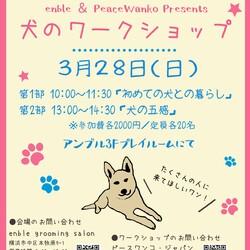 「犬のワークショップ」横浜本牧で開催!
