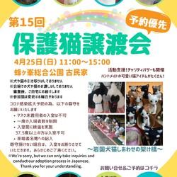 第15回保護猫譲渡会in山口県