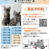 第103回保護猫たちの幸せ探し会