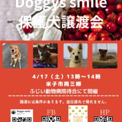 doggyssmile保護犬譲渡会 サムネイル1