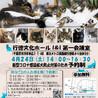 【千葉県市川市】イコール保護猫譲渡会vol.6