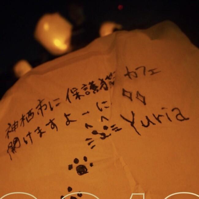 Yuria&14animalsのカバー写真