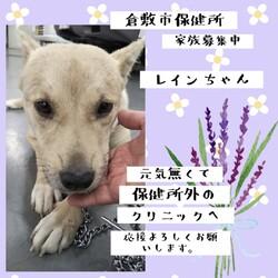 「2021年4月14日の倉敷→全頭卒業!」サムネイル3