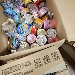 「缶詰いっぱい買いました!」サムネイル3
