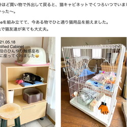 「Updated:猫の様子2021.05.18」サムネイル2