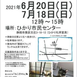ねこのWa保護猫譲渡会 静岡市葵区