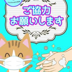 第26回 とだニャン保護猫里親会 サムネイル3