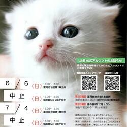 浦安保護猫ミニ譲渡会