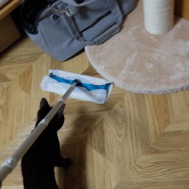 掃除のお手伝い
