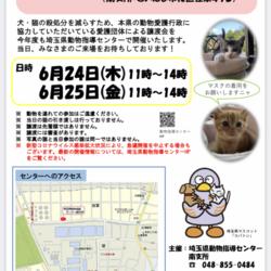 中止!→保護猫♡認定団体譲渡会を開催します! サムネイル1