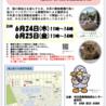 中止!→保護猫♡認定団体譲渡会を開催します!