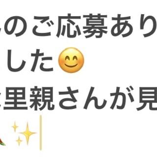 【里親募集】セキセイインコ