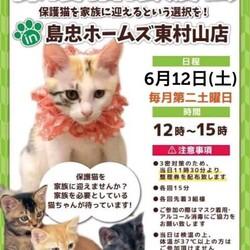6月12日(土)島忠ホームズ東村山店譲渡会!