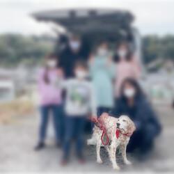 「祝☆フィラリアの犬に里親決定!」サムネイル3