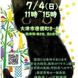 石山タツケン譲渡会