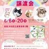 【6/20東日本橋】宮古島出身♡イグニスちゃん サムネイル5