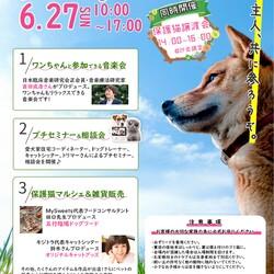 「ハレノテラス保護猫譲渡会」サムネイル3