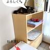 猫の様子2021.06.24