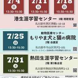 ▼猫の譲渡会▼名古屋市熱田区 サムネイル3