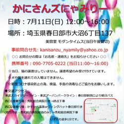 かにさんズにゃみりー☆猫の譲渡会in春日部 サムネイル3