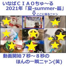クロス新宿ビジョンライブカメラ いなばCIAOちゅーる2021夏TVCM放送中 サムネイル1
