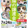 子猫26匹のオリンピック/愛知県みよし市