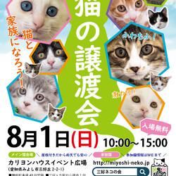 子猫26匹祭り/愛知県みよし市
