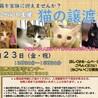 名古屋市名東区★猫の譲渡会★