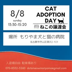 ◌名古屋市守山区◌猫の譲渡会