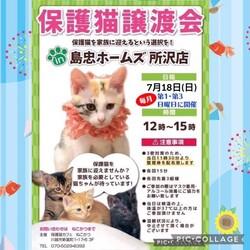 7月18日(日)島忠ホームズ所沢店譲渡会!