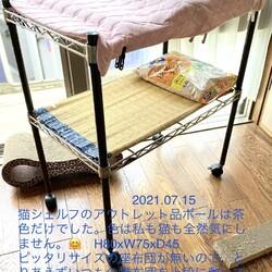 猫用ワイヤーシェルフの涼み台