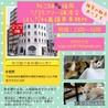 【譲渡会or個別面会可】少し薄色の三毛猫 サムネイル4