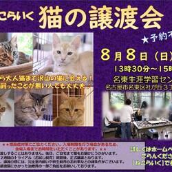 名古屋市名東区/猫の譲渡会