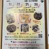 保護猫の譲渡会(ねこの歩添道さんの主催の譲渡会)
