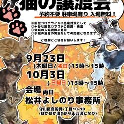 保護猫の譲渡会in守山 サムネイル1