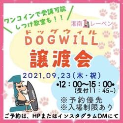 DOG WILL@譲渡会&しつけ教室 サムネイル1