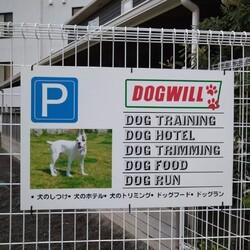 DOG WILL@譲渡会&しつけ教室 サムネイル2
