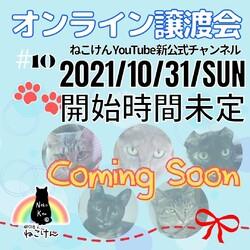 ねこけん★YouTube LIVE譲渡会!