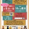 大阪10月31日藤井寺ほごねこ譲渡会参加猫うずまき サムネイル6
